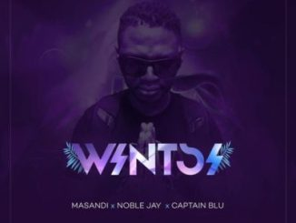 DJ Bongz – Wintsi Ft. Noble Jay, Captain Blu & Masandi Mp3 Download