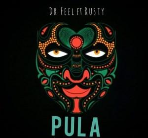 Dr Feel Pula Mp3 Download