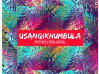 Kid Fonque, Cuebur, Andyboi, Jonny Miller & Okmalumkoolkat Usangikhumbula Mp3 Download