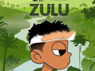 Nasty C Zulu Mixtape Zip Download Fakaza