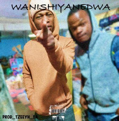 Tzeeyh & Reggie L WANGISHIYA NGEDWA Mp3 Fakaza Download