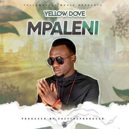 Yellow Dove – Jumpa