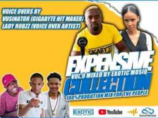 Unlimited Soul & Exotic Musiq – Expensive Collection Vol. 9