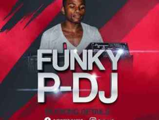 Funky-P – Musical Journey Vol. 004