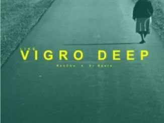 ReeCho – Like Vigro Deep Ft. VR Beats