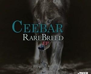 Ceebar – RareBreed EP Ceebar – The Marine (AfroTech Mix)