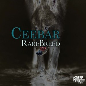 Ceebar – The Marine (AfroTech Mix)
