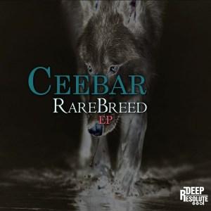Ceebar – The Marine (AfroTech Mix)