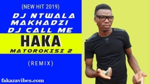 Haka Matorokisi Part 2 – Dj ntwala & Dj Call Me ft Makhadzi (Remix)