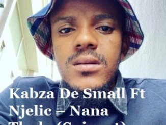 Kabza De Small Ft Njelic – Nana Thula (Snippet)