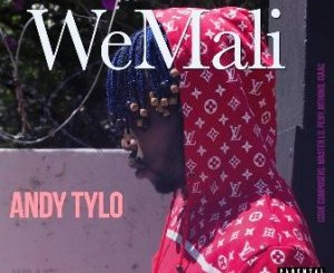 Andy Tylo – WeMali