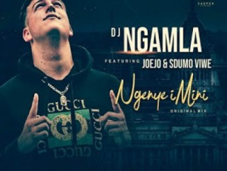 DJ Ngamla – Ngenye Imini Ft. Sdumo Viwe & Joejo