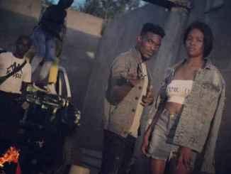 Deejay Zebra & Pro-Tee – Harmony