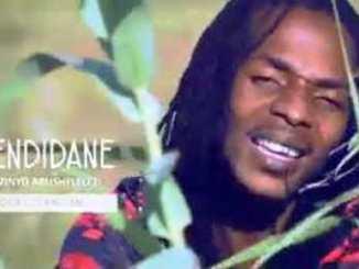 Ezendidane - Amazinyo abushelelezi