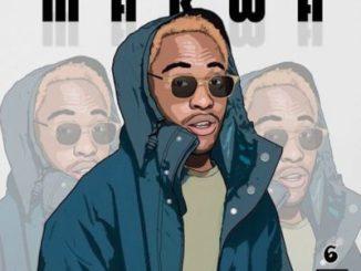 Makwa - Mshubhelo EP