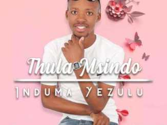 Thula Msindo – Tman Mr Kwenzela (Support)