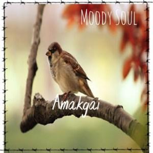 Moody Soul – Amakgai