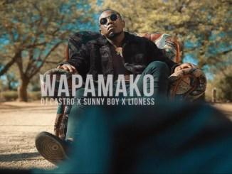 Dj Castro – Wapamako (Ft. Sunny Boy & Lioness)