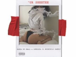 Kabza De Small Ft Moonchild – Ur Sheetee