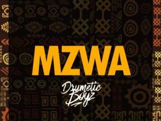 DrumeticBoyz – MZWA
