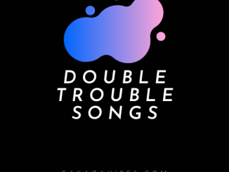 double trouble 2020
