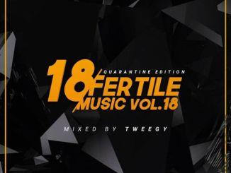 Tweegy – Fertile Music Vol. 18
