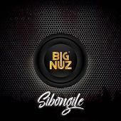 Big Nuz – Sibongile