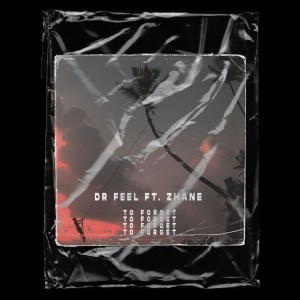 Dr Feel – To Forget Ft. Zhane