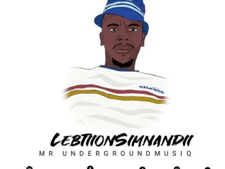 Lebtiion Siimnandi & Dr.sauce – Piano Groove Vol.8 (Strictly DJ King Tara & Mdu a.k.a Trp)