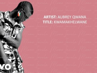 Aubrey Qwana - KwaMakhelwane (Lyric Video)