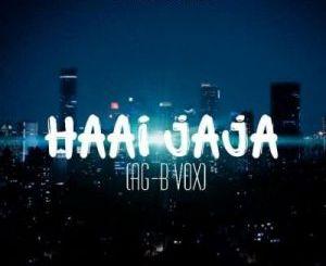 DJ FeezoL & DJ Zain – Haai Jaja (AG-B Vox)