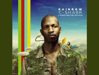 C-Sharp, Mthokozisi Ndaba, Family First & DJ Sox – Rainbow