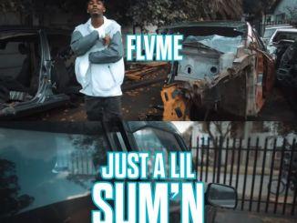 FLVME