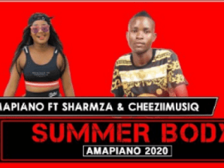Mr Mapiano – Summer Body (Original)
