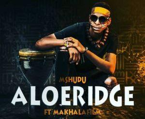 Mshudu – Aloeridge Ft. Makhalafilm