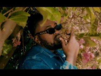 VIDEO: Zaddy Swag – Warrior (Remix) Ft. Emtee, DJ Capital, Touchline & Bigstar Johnson