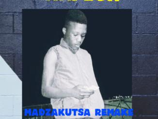 Amapiano Madzhakutswa Remake