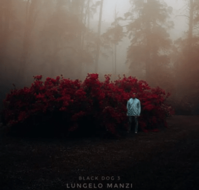 Lungelo Manzi – Closure