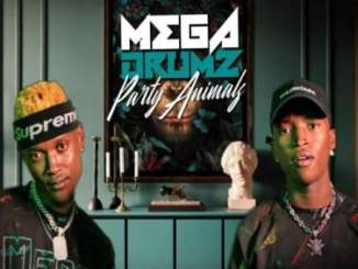 Megadrumz – Our Land Ft. ACHIM, Zama Radebe & Candy Man