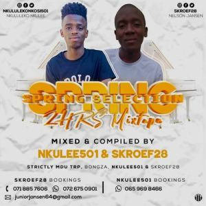 Nkulee 501 & Skroef28 – Spring Selection Mix (Strictly Mdu aka TRP & Bongza)