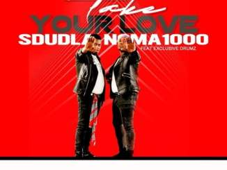 Sdudla Noma1000 – Take Your Love ft. Exclusive Drumz