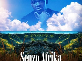 Senzo Afrika - Usebenzel ikhaya