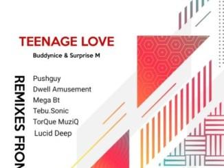 Buddynice, Surprise M – Teenage Love (TorQue MuziQ Afro Tech Mix)