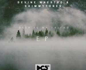 Devine Maestro & ShimmyTones – Everyday You Out There (Original Mix)