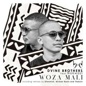 Dvine Brothers, Nokwazi – Woza Mali (Incl. Remixes)
