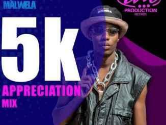 Insane Malwela – 5k Appreciation Mix