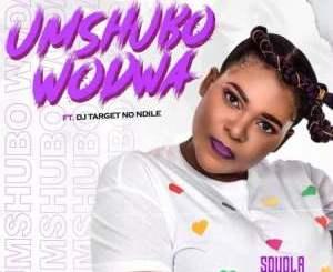 Sdudla Somdantso – Umshubo Wodwa Ft. Dj Target no Ndile