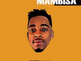 DJ Maphorisa – Soweto Baby