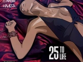 DJ Radix – 25 To Life