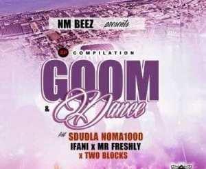 EP: Sdudla Noma1000 – Gqom & Dance